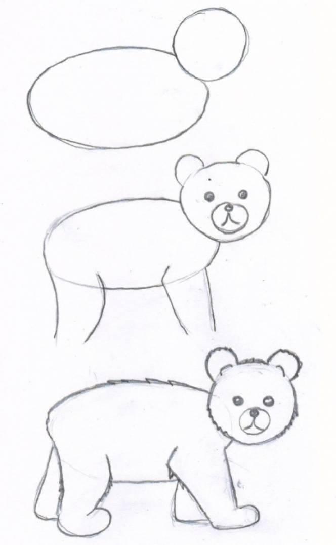 Учимся поэтапно медведя