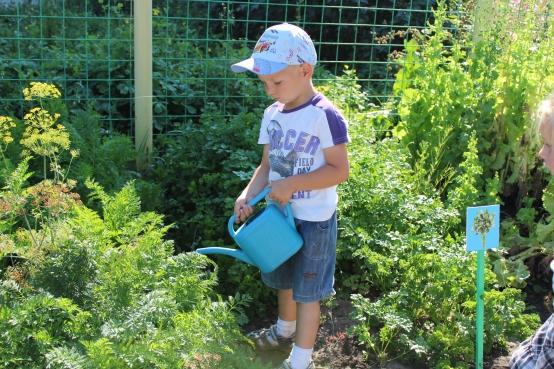 как знакомить дошкольников с неживой природой