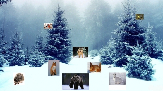 Картинки о зиме в лесу для детей