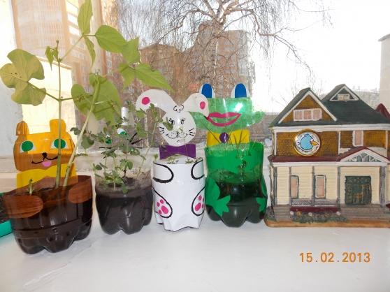 Как сделать огород на окнах в детском саду