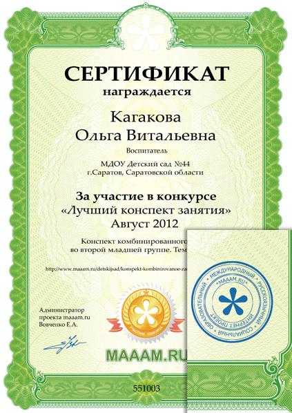 Школьный Сертификат Образец - фото 7