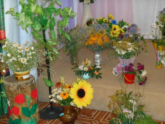 знакомство с комнатные цветы в детском саду