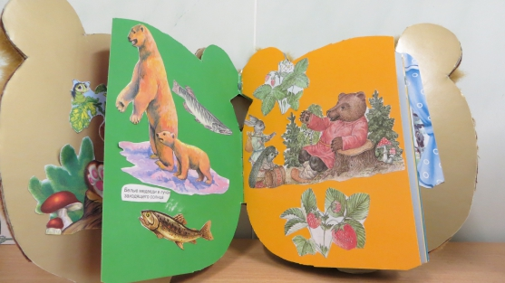 знакомство дошкольников дикими животными