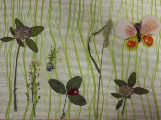 «Бабочка в траве». Детский МК.  Аппликация с использованием природного материала
