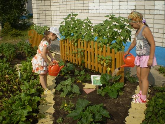 Оформления огорода в детском саду