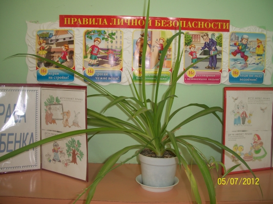Картинки для шкафчика в детском саду ромашка