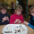 Проект «Камни». Формирование у детей среднего дошкольного возраста целостного представления об окружающем мире