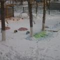 Вот зима пришла!