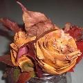 Букет из осенних листьев.