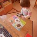 Познавательно-продуктивная деятельность с детьми средней группы компенсирующей направленности на тему: «Песочная страна»