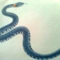 Художественное творчество (рисование) «Змейка»