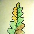 Как нарисовать лист дуба.