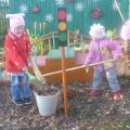 Тематический план работы по экологическому воспитанию (осень)