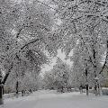 Чародейкою зимой…