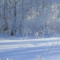 Зима— Краса