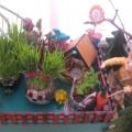 «Зелёный огород на окне»
