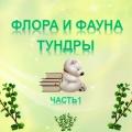 Презентация по краеведению «Растительный мир тундры»