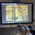 Праздник «Золотая осень» для учащихся 1–2 классов