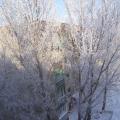 Наконец-то к нам пришла зима.