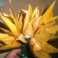 Цветы из осенних листьев! Наша выставка