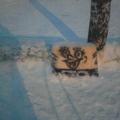 Зимние забавы «Морское царство». Презентация зимней площадки