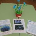 Цветочный калейдоскоп. Экологический проект в средней группе.