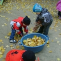 Осенняя прогулка с детьми. Листопад