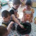 Уникальное экологическое занятие с детьми «Семечко»
