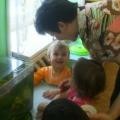 Методическая разработка занятия для детей младшего дошкольного возраста. «Рыбки живые и игрушечные»