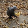 Стихотворение «Осенняя прогулка»