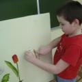 Дидактическая игра «Части растений»