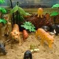 Макеты для уголка природы «Животные жарких стран» и «Домашние животные»