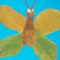 Фотоотчет о выставке детских работ из осенних листьев «Природа и фантазия».
