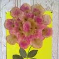 Роза из розы в подарок. Аппликация из лепестков