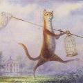 Праздник всех кошек