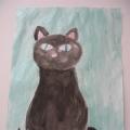 Фотоотчёт с выставки, посвящённой Дню Кошки