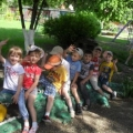 Фоторепортаж «Как хорошо у нас в саду!»