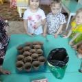 Как мы вырастили тюльпаны для мамы
