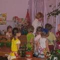 «Банный день» для комнатных растений