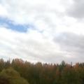 Красота осеннего леса или пора копать картошку.