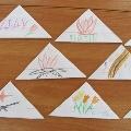 Методическая разработка занятия для детей подготовительной к школе группе по разделу «Ручной труд»