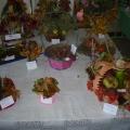Конкурс «Осенняя выставка» 2012–2013 учебный год