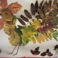 Выставка детских поделок из природного материала совместно с родителями «Необычное из обычного»