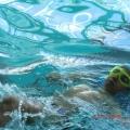 Мы— участники окружного водно-спортивного праздника «Дельфиненок— 2013»