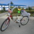 «Все на велосипеды»— велопраздник