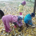 Осень— дивная пора для прогулок
