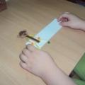 Игры с прищепками в речевом развитии дошкольников
