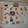 Познавательно-исследовательская деятельность в средней группе. Тема: Апельсин.