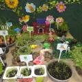 Огород на подоконнике «Сказка для маленьких фей»