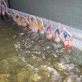 Подготовка детей к обучению плаванию в детском саду